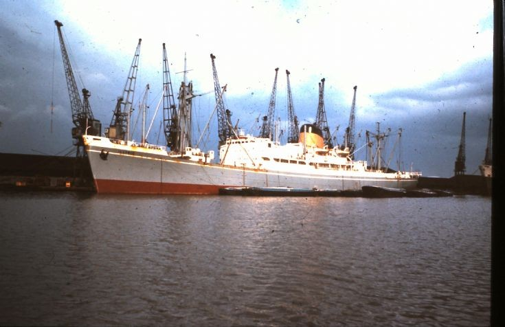 ILLYRIC at Royal Docks