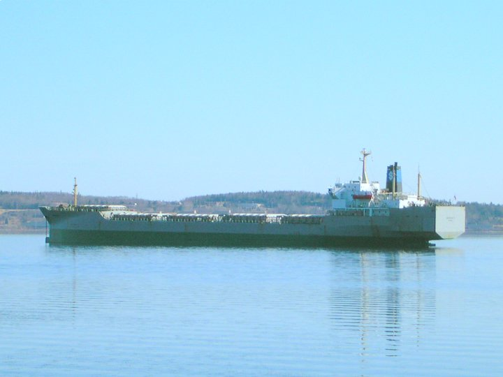 Georgia S patiently waiting in Bedford Basin