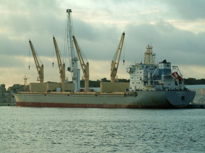 Bulk carrier Cornelia