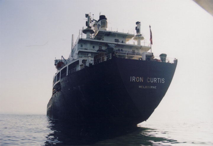 Bulk Carrier Iron Curtis in Manila